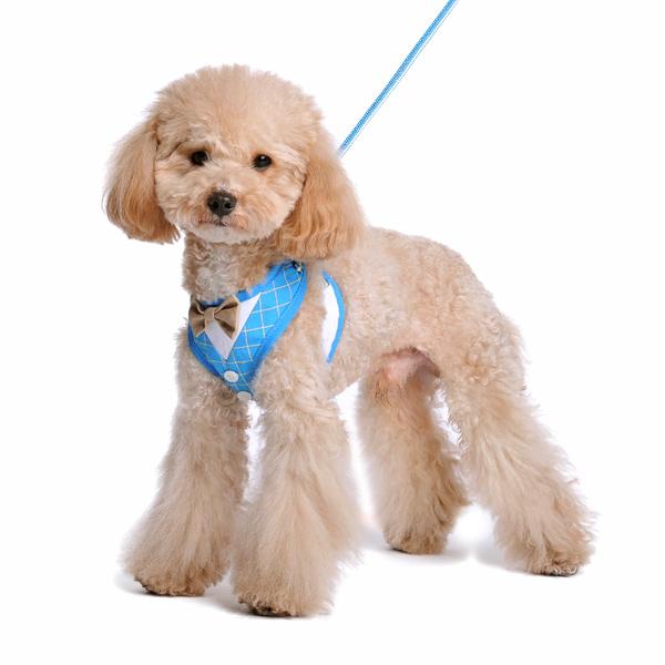 easygo-bowtie-plaid-dog-2