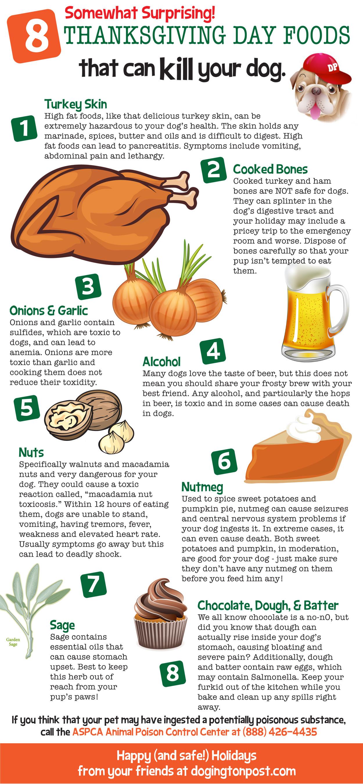 Thanksgiving food dangers