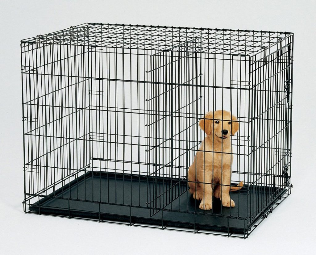 dog-crate with divider