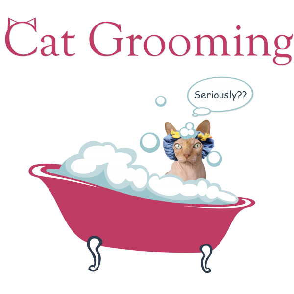 Cat Grooming button