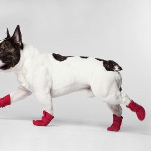 Wellies-Boots_Red_2