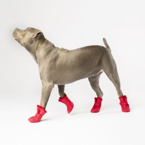 Wellies-Boots_lined-Red_2