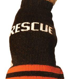 a10c1927-cd_rescue150
