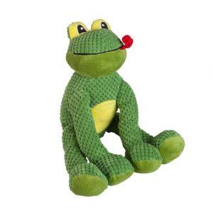 floppy_frog