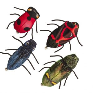 nicecatch_insects