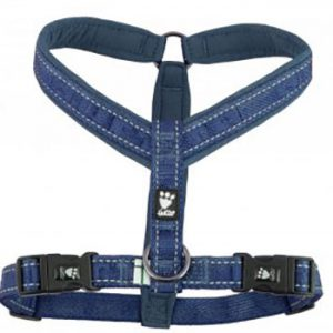 Hurtta-Casual-Y-harness_River-300x295