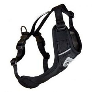 Vest-Harness-V2-Black-300x229