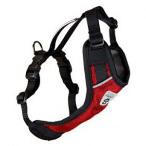 Vest-Harness-V2-Red-300x229