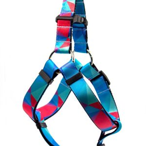 harness_prism