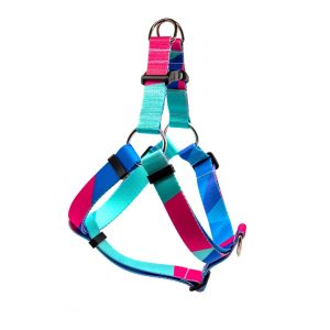 harness_prism2