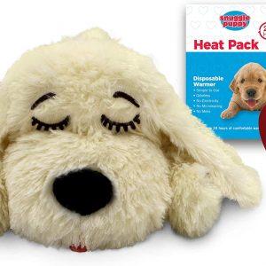 snuggle-puppy-golden