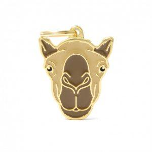 wild-tag-camel