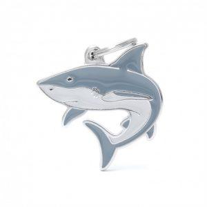 wild-tag-shark