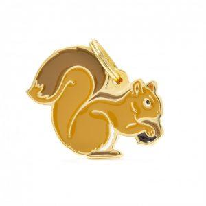 zoo-wild-squirrel