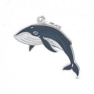 zoo-wild-whale