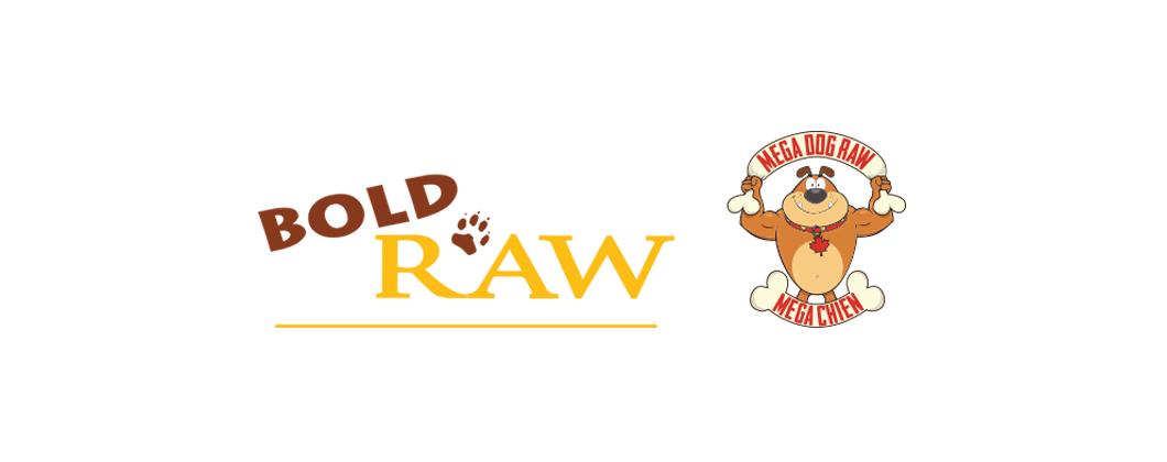boldraw-logo