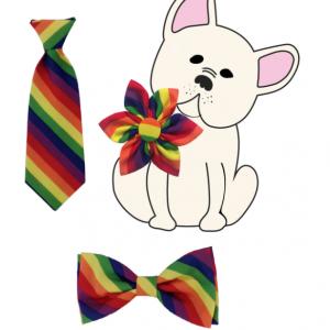 rainbow_bows_2
